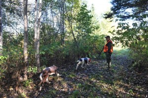 chasse-becasse-quebe059